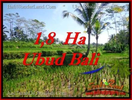 Beautiful PROPERTY LAND FOR SALE IN UBUD BALI TJUB553