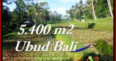 Exotic PROPERTY UBUD LAND FOR SALE TJUB554
