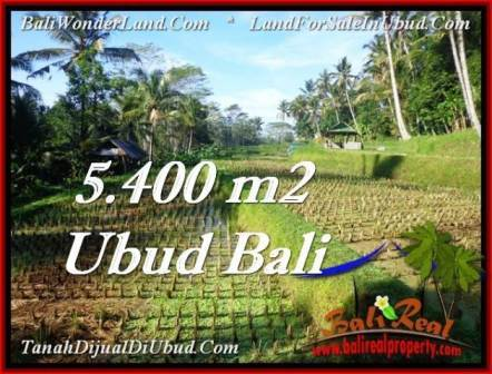 Exotic PROPERTY UBUD LAND FOR SALE TJUB554