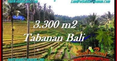Beautiful LAND IN TABANAN FOR SALE TJTB274