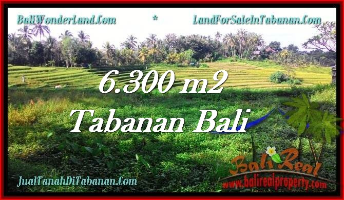 FOR SALE Affordable PROPERTY 6,300 m2 LAND IN TABANAN BALI TJTB275