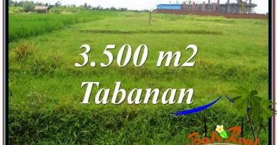 FOR SALE Exotic PROPERTY 3,500 m2 LAND IN TABANAN BALI TJTB302