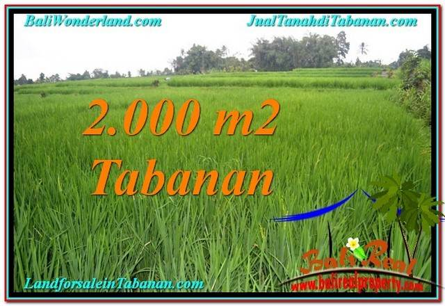 Exotic PROPERTY TABANAN 2,000 m2 LAND FOR SALE TJTB303