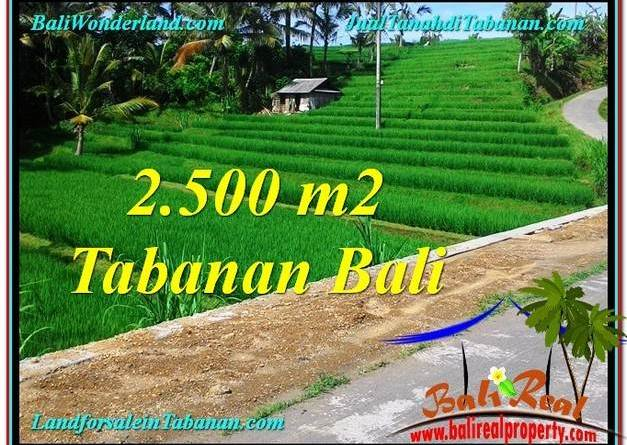 LAND IN Tabanan Penebel BALI FOR SALE TJTB305