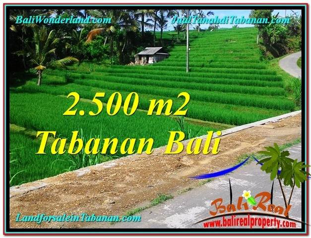 FOR SALE Exotic PROPERTY 2,500 m2 LAND IN TABANAN BALI TJTB305