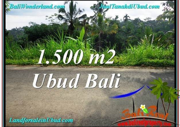 FOR SALE Beautiful PROPERTY LAND IN UBUD TJUB556