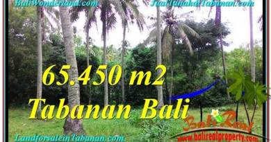Beautiful TABANAN BALI 65,450 m2 LAND FOR SALE TJTB290