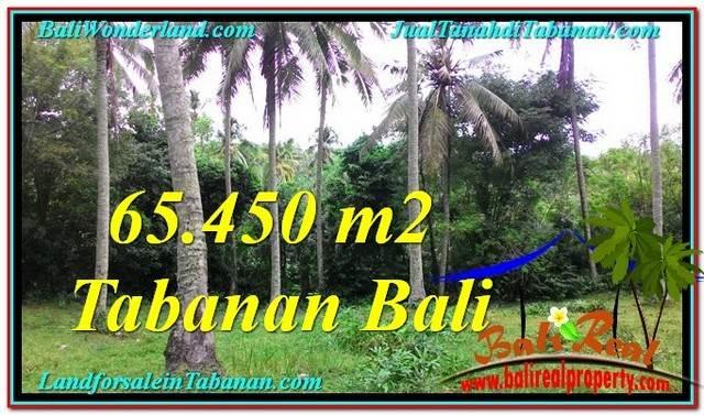 Beautiful TABANAN BALI 65,450 m2 LAND FOR SALE TJTB290
