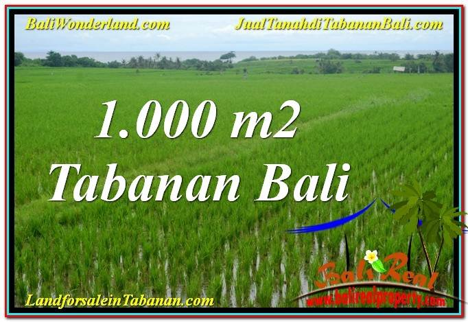 FOR SALE Magnificent 1,000 m2 LAND IN Tabanan Kerambitan BALI TJTB307