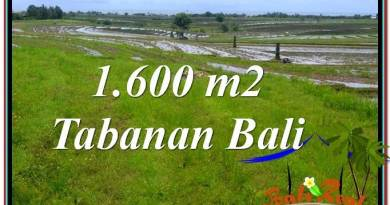 Exotic LAND SALE IN TABANAN TJTB310