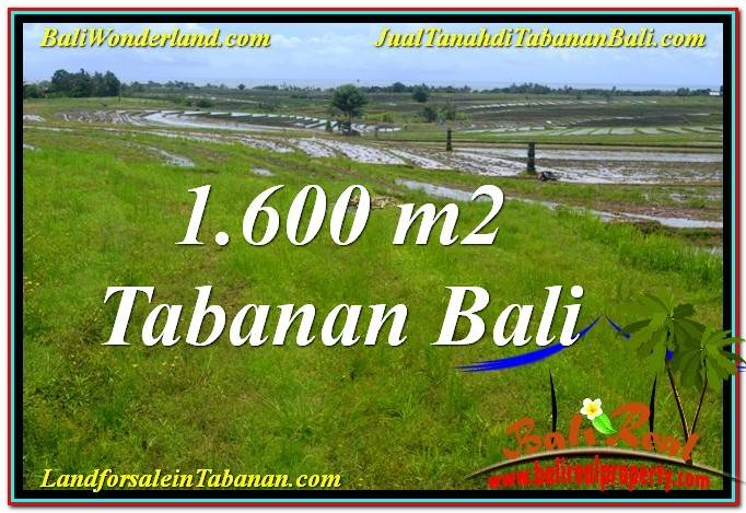 Beautiful PROPERTY Tabanan Selemadeg BALI 1,600 m2 LAND FOR SALE TJTB310