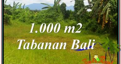 Exotic PROPERTY 1,000 m2 LAND FOR SALE IN Tabanan Selemadeg TJTB311