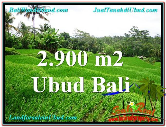 Exotic PROPERTY LAND FOR SALE IN UBUD TJUB564