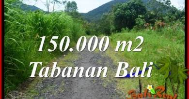 Magnificent 150,000 m2 LAND IN Tabanan Penebel FOR SALE TJTB318