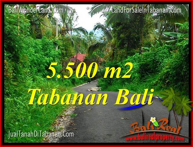 Exotic PROPERTY 5,500 m2 LAND FOR SALE IN TABANAN BALI TJTB323