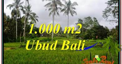 Magnificent LAND SALE IN Ubud Payangan BALI TJUB570