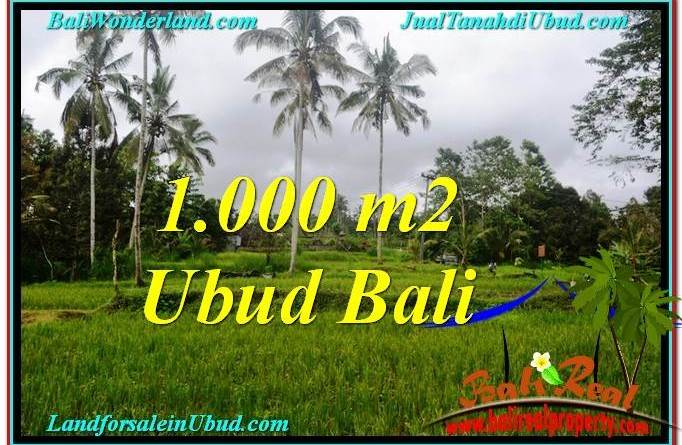Magnificent LAND SALE IN Ubud Payangan BALI TJUB570