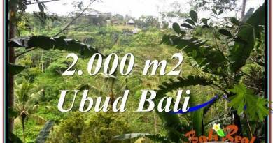 Exotic PROPERTY LAND SALE IN UBUD TJUB573