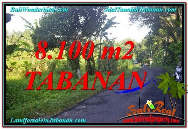 Beautiful PROPERTY 8,100 m2 LAND FOR SALE IN TABANAN BALI TJTB329