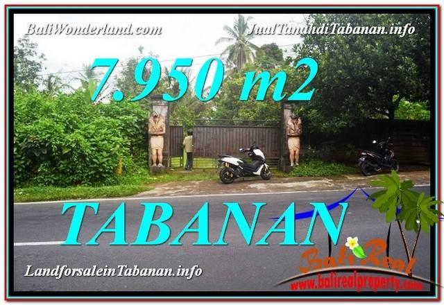 Magnificent PROPERTY 7,950 m2 LAND IN Tabanan Bedugul FOR SALE TJTB331