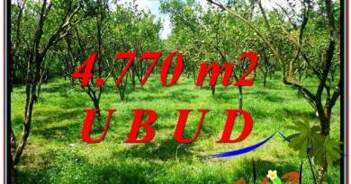 Affordable PROPERTY 4,770 m2 LAND SALE IN UBUD BALI TJUB598