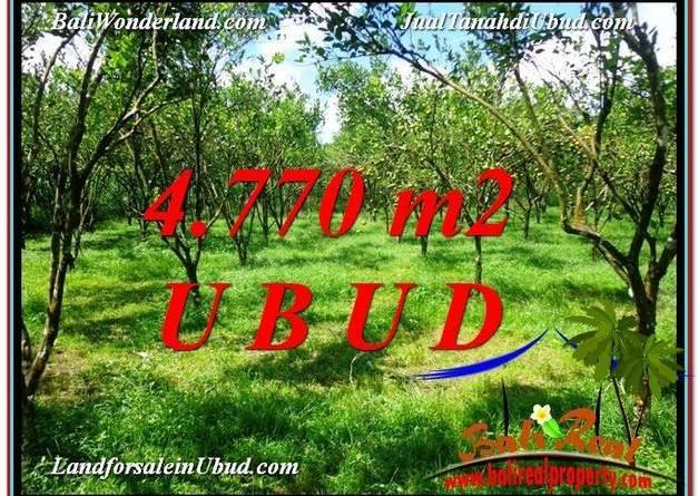 Affordable PROPERTY 4,770 m2 LAND SALE IN UBUD BALI TJUB598