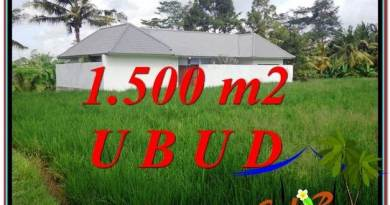 Beautiful PROPERTY LAND SALE IN UBUD TJUB600