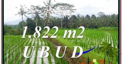 LAND FOR SALE IN Ubud Payangan BALI TJUB574