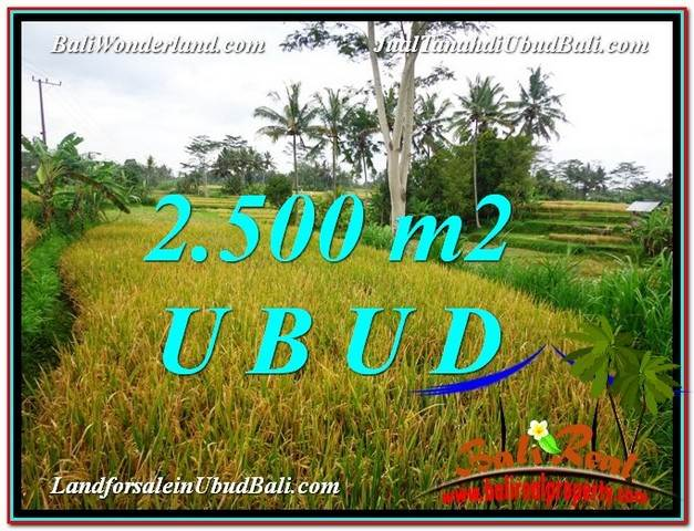 Beautiful PROPERTY 2,500 m2 LAND SALE IN Ubud Pejeng TJUB577