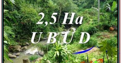 Beautiful LAND IN UBUD FOR SALE TJUB579