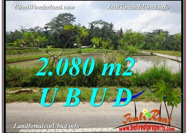 LAND IN Ubud Pejeng BALI FOR SALE TJUB582
