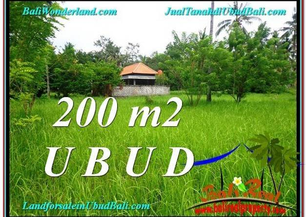 Magnificent PROPERTY LAND IN UBUD FOR SALE TJUB584