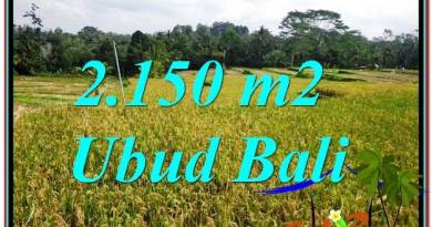 Affordable 2,150 m2 LAND FOR SALE IN UBUD TJUB606