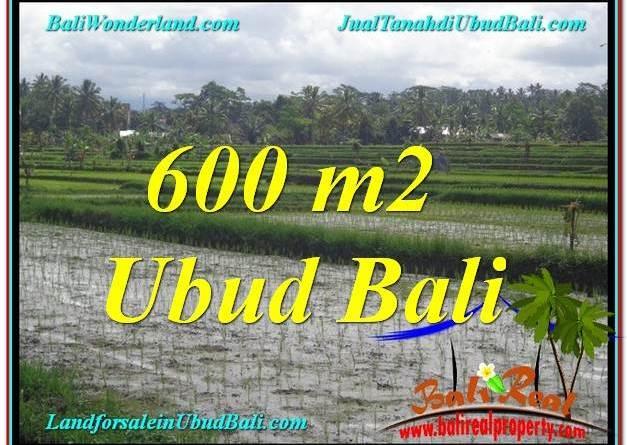 Affordable 600 m2 LAND IN UBUD BALI FOR SALE TJUB607