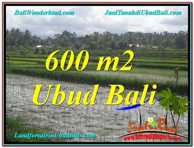 Magnificent PROPERTY LAND SALE IN UBUD TJUB607