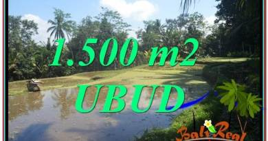 Magnificent LAND SALE IN Ubud Payangan BALI TJUB630