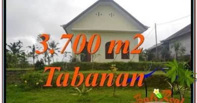 FOR SALE Exotic LAND IN Tabanan Penebel BALI TJTB336