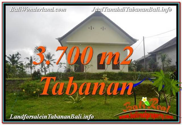 Beautiful PROPERTY Tabanan Penebel 3,700 m2 LAND FOR SALE TJTB336