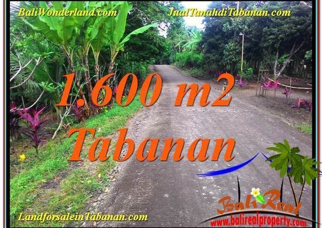 FOR SALE Magnificent 1,600 m2 LAND IN Tabanan Selemadeg BALI TJTB337