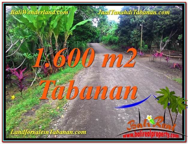1,600 m2 LAND IN Tabanan Selemadeg BALI FOR SALE TJTB337