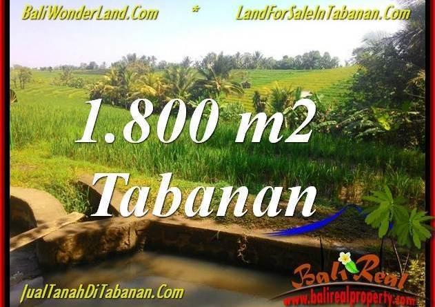TABANAN BALI 1,800 m2 LAND FOR SALE TJTB338