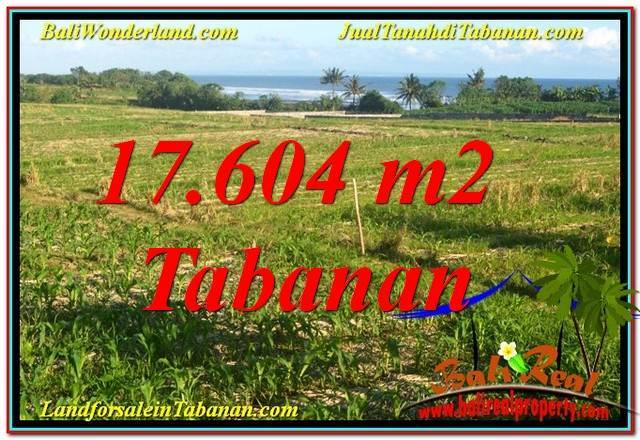 Exotic PROPERTY 17,604 m2 LAND IN TABANAN FOR SALE TJTB342