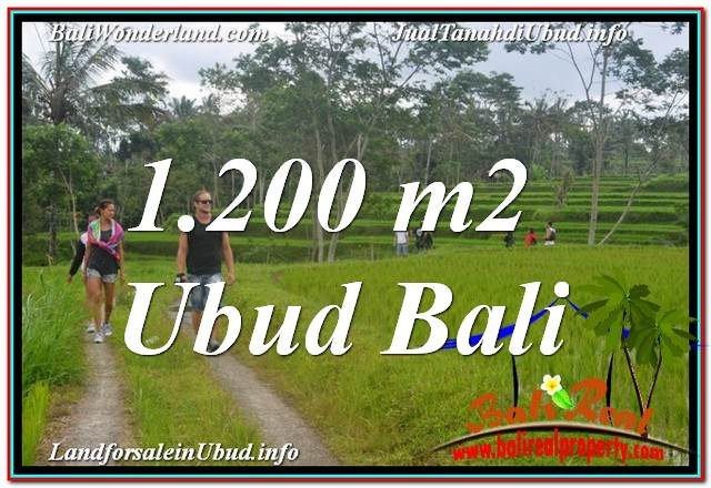 Exotic PROPERTY 1,200 m2 LAND SALE IN UBUD BALI TJUB624