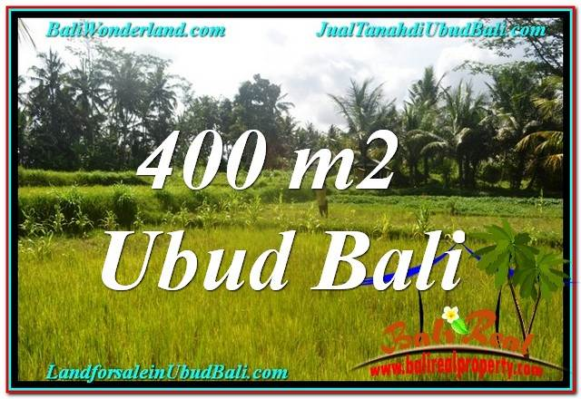 Beautiful PROPERTY 400 m2 LAND SALE IN Ubud Pejeng TJUB627