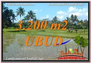 Beautiful UBUD BALI 3,200 m2 LAND FOR SALE TJUB628