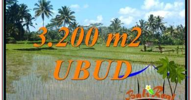 Beautiful UBUD BALI 3,200 m2 LAND FOR SALE TJUB628