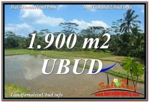 Beautiful LAND IN UBUD FOR SALE TJUB629