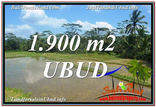 Affordable PROPERTY 1,900 m2 LAND FOR SALE IN Ubud BALI TJUB629