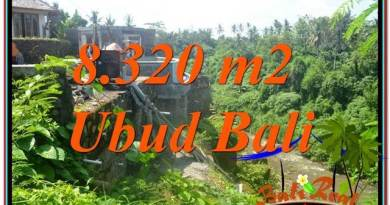 FOR SALE Magnificent PROPERTY LAND IN UBUD TJUB635