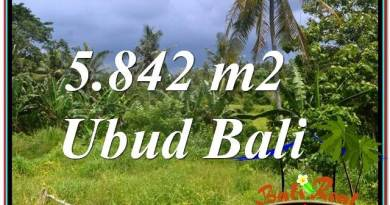 Beautiful PROPERTY UBUD LAND FOR SALE TJUB638